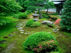 IMAGES OF ZEN gardens   è un'espressione in giapponese, mujō.