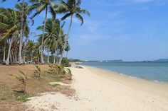 Pasir Ris Park, home to one of the best beaches in Singapore