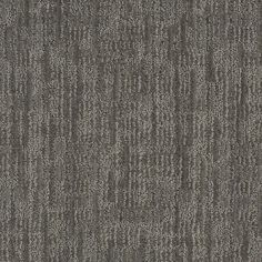 Shop STAINMASTER Active Family Unmistakable 7L62900556 Power Gray Cut and Loop Indoor Carpet at Lowes.com