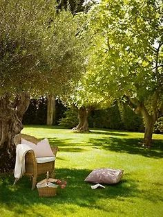 Move the picnic out to a shady tree