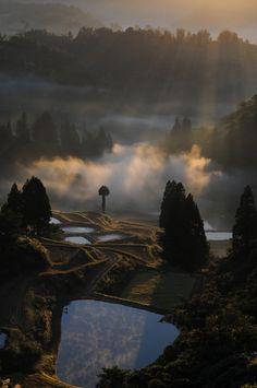 Yamakoshi, Niigata, Japan
