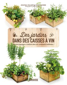 """Un livre, une dose d'inspiration !  """"Des jardins dans des caisses à vin"""""""