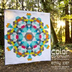 Color Continuum -- no. 03 emilychromatic Five Bold and Geometric Quilt Projects -- In quilts, as in life, few things are more important than color. Geometric Quilt, Hexagon Quilt, Hexagons, Star Quilts, Quilt Blocks, Quilting Projects, Quilting Designs, Textiles, Medallion Quilt