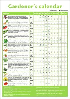 When Is The Best Time To Water A Vegetable Garden Novice Gardeners Beginners Vegetable Growing Gardening Calendar Best Time To Water Vegetable Garden In Texas