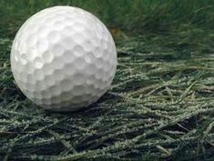 Golf ball lies on the grass, which is covered with white ice crystals. Golf Ball, Royalty Free Images, Grass, Ice Crystals, Stock Photos, Catalog, Copyright Free Images, Grasses, Brochures