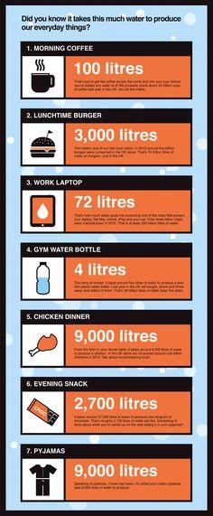 Do you know how much water it takes to satisfy our everyday needs ? / Savez-vous quelle quantité d'eau il faut pour satisfaire nos besoins quotidiens ?