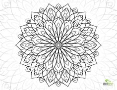Free Adult Coloring Pages Flowers Fresh Coloring Books Coloring Page Fabulous Simple Adult Pages Flower Coloring Sheets, Printable Flower Coloring Pages, Fruit Coloring Pages, Spring Coloring Pages, Pattern Coloring Pages, Printable Adult Coloring Pages, Mandala Coloring Pages, Coloring Books, Colouring