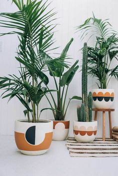 How Pop and Scott translate warmth, comfort, and playfulness into liveable design - cacti, ferns, house plants Hanging Plants, Potted Plants, Pots For Plants, Plantas Indoor, Pop And Scott, Cute Diy, Painted Plant Pots, Painted Flower Pots, Fleur Design