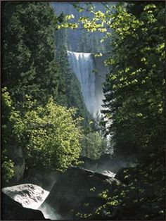 Vernal Fall Seen Through Lush Spring Foliage in Woodland Setting Stretched Canvas Print by Marc Moritsch at Art.com