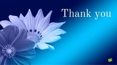 """Saying """"Thank you"""" is a way of expressing gratitude towards another and a means of moral reward. Thank You Msg, Thank You Qoutes, Thank You Messages Gratitude, Thank You Gifs, Thank You Pictures, Thank You Images, Thank You Cards, Thank You For Birthday Wishes, Thank You Wishes"""