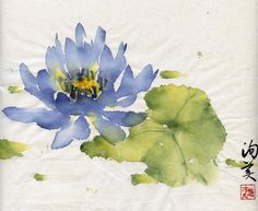 Blue Lotus, without the leaf, with a dragonfly! Japanese Painting, Chinese Painting, Chinese Art, Japanese Art, Chinese Brush, Watercolor Lotus, Watercolor Flowers, Watercolor Paintings, Watercolours