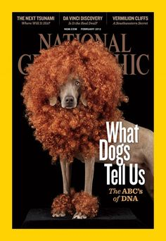 #cover Nationsl Geographic #magazine :) (15th Annual SPD Magazine of the Year finalists)