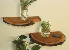 Shelves Wood Slab Shelves Wood Shelf Natural Wood by TimberRebirth