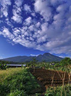 الْحَمْدُ لِلهِ رَبِّ الْعَالَمِينَ Mount Salak - West Java , Indonesia | #Indonesia  #Travel