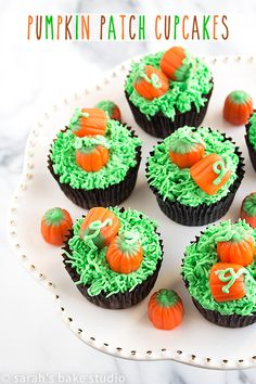 Patch Cupcakes – decorate your favorite chocolate cupcakes with an easy fall ensemble, candy pumpkins in a pumpkin patch.Pumpkin Patch Cupcakes – decorate your favorite chocolate cupcakes with an easy fall ensemble, candy pumpkins in a pumpkin pa. Snowman Cupcakes, Pumpkin Cupcakes, Fun Cupcakes, Cupcake Cakes, Decorate Cupcakes, Ladybug Cupcakes, Kitty Cupcakes, Kid Cakes, Rose Cupcake