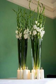 Gladiolos decoracion