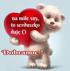 Teddy Bear, Humor, Cos, Pictures, Polish, Animals, Quotes, Photos, Animales