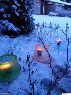 suomalainen talvinen puutarha - Google-haku