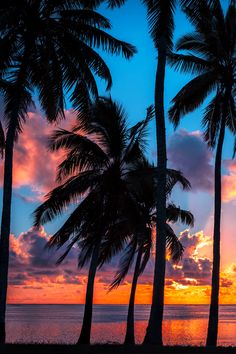 vividessentials: Sunset Colors | vividessentials FabFotoFinds