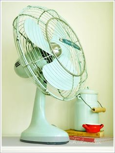 mint.quenalbertini: Vintage fan
