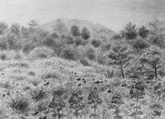 Na svahu Vesuvu, akvarel Jana Haasová Vesuvanka Minimax.cz Volcanoes, Watercolor Landscape, Rocks, Trees, Snow, Paintings, Drawings, Plants, Outdoor