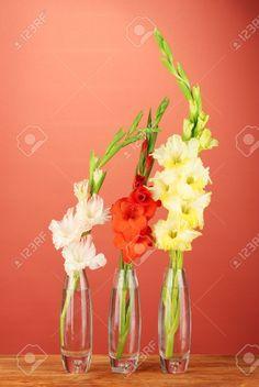 Gladiolus in Bud Vase