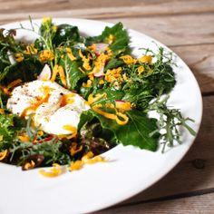Laskominy od Maryny: Salát z listů hořčice a kedlubny s pošírovaným vejcem a cheddarem