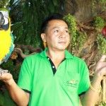 Economical and Ecological: Eco Tour Packages