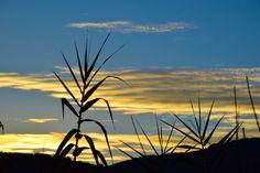fotoitalien:  evening photo 2   one evening by promising time, tomorrow will be beautiful!una sera dal tempo promettente, domani sarà ancora bello !