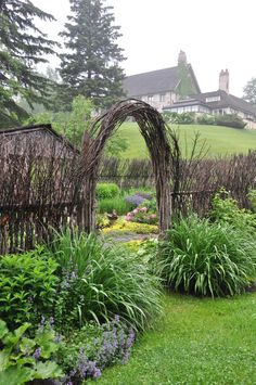 Three Dogs in a Garden: A Willow Garden in the Rolling Hills of Caledon, Ontario
