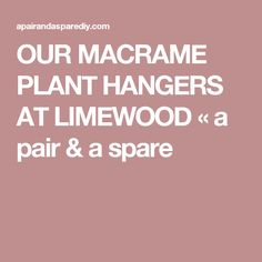 OUR MACRAME PLANT HANGERS AT LIMEWOOD « a pair & a spare