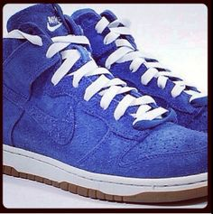 Dunk royal suede