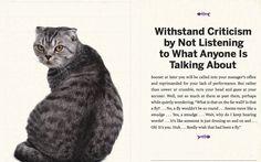 Cat's advice 5