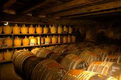 Cognac - barrels of cognac - Charentes dept. - Poitou-Charentes région, France