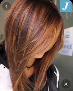 Copper Highlights On Brown Hair, Copper Brown Hair, Hair Color Highlights, Light Auburn Hair, Light Hair, Fall Auburn Hair, Medium Hair Cuts, Medium Hair Styles, Short Hair Styles