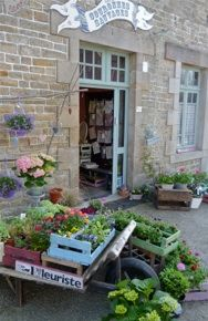 Always inspired by Claire's lovely shop in France