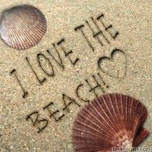 """My life is like a stroll on the beach...as near to the edge as I can go."""