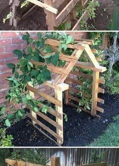 Pallet Trellis would love for my pea plants and cucumbers related to Pallet Garden Trellis Raised Ranch Deck Designs Pallet Garden - All About Outdoor Projects, Garden Projects, Diy Projects, Cucumber Plant, Cucumber Trellis, Garden Trellis, Diy Trellis, Garden Structures, Dream Garden