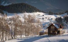 Comuna Fundata, Brașov Foto: Mihai Lefter  #21milioane #romani #romania #muntii #peisaje #iarna #brasov Country, Outdoor, Outdoors, Rural Area, Country Music, Outdoor Games, The Great Outdoors