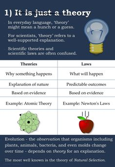 The top 5 misconceptions about evolution laid out for how this really works. Spread the knowledge people.