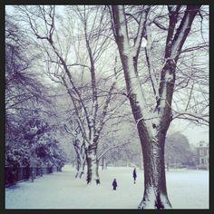 snow walk Snow, London, Outdoor, Outdoors, Outdoor Games, Human Eye