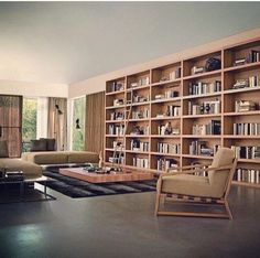 Superb A Complete Wall For Storage And Book Shelves