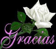 Fraces, Reflexiones, Mensajes, Amor, Amistad recolectadas en la red www.salvadorrdz.com