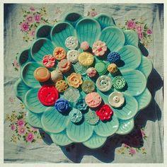 button plate flower