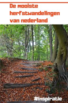 Places Ive Been, Places To Go, Weekender, Menorca, Netherlands, Trail, Road Trip, Hiking, Camping