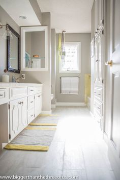 Benjamin Moore Gray Huskie color matched at Home Depot - light gray bathroom…