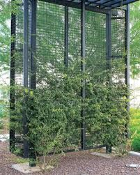Image result for perforated metal screen landscape