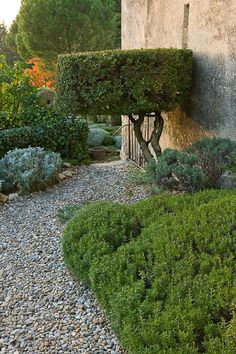 Nicole de Vesian's garden in Provence, photographed by Clive Nichols. 18