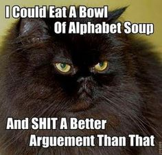 I could eat a bowl of alphabet soup and shit a better argument than that.