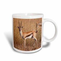 3dRose Thomsons Gazelle.(Gazella thomsoni).Serengeti National Park,Tanzania, Ceramic Mug, 15-ounce